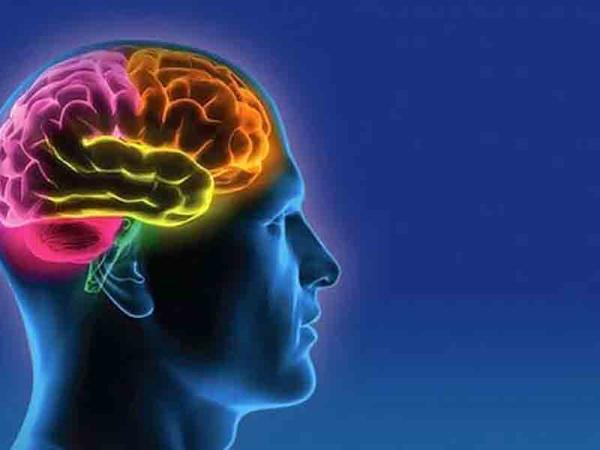"""Yaşlandıqca beyin hüceyrələri ölürmü? - <span class=""""color_red"""">ARAŞDIRMA</span>"""