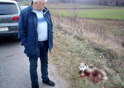 """Ukraynada məmur iti sürüdü, cinayət işi açıldı - <span class=""""color_red"""">VİDEO</span>"""