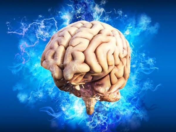 Beyində dostla düşməni dərhal ayırd edən funksiya var - Biz onu işlədə bilmirik