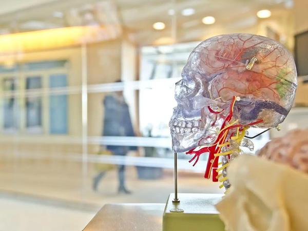 Epilepsiya tutması olacağını əvvəlcədən bilmək olacaq?