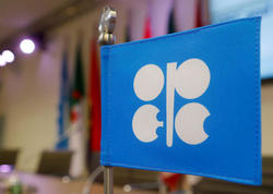OPEK ölkələri neft hasilatının azaldılması üzrə saziş barədə razılığa gəliblər