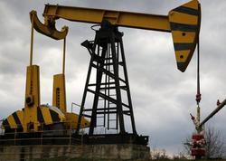 Noyabrda gündəlik neft hasilatı 776 min barrel olub