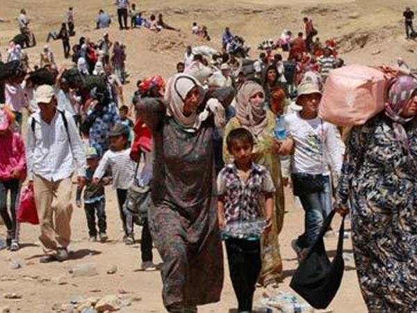 1477 nəfər Suriya və İraqa gedib, 903 nəfərin öldüyü və ya itkin düşdüyü güman edilir