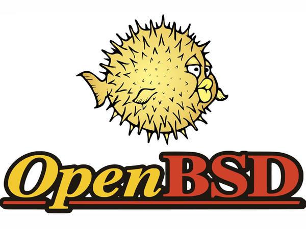 OpenBSD-də 4 ciddi sistem boşluğu aşkar edilib