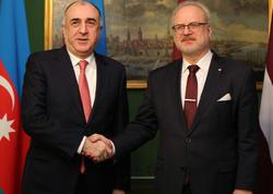 Elmar Məmmədyarov Latviya Prezidenti ilə görüşüb - FOTO