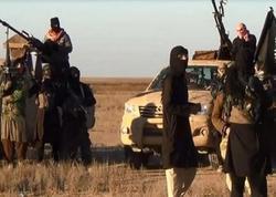 İŞİD üzvü olmuş 150 terrorçu Türkiyədən deportasiya edilib