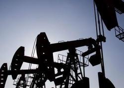 Bu il qlobal neft tələbatı gündəlik 1,2 milyon barrel artacaq