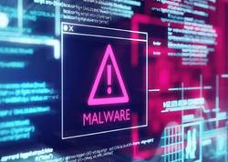DDoS hücumlarının sayı artacaq