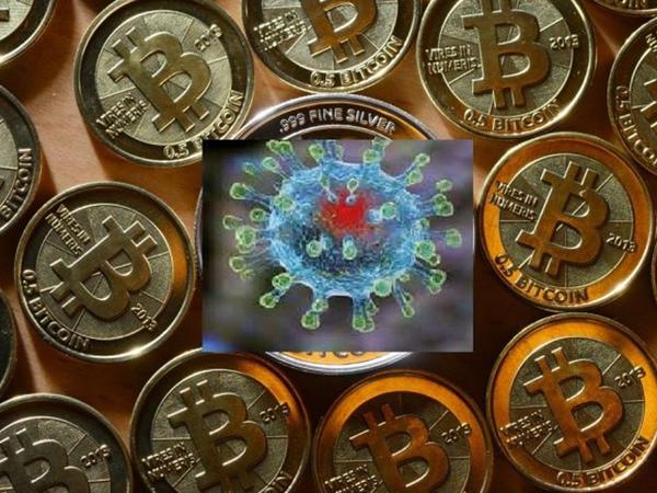Koronavirus Bitcoin kursuna necə təsir göstərəcək?