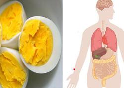 Yumurtanın ən böyük faydaları