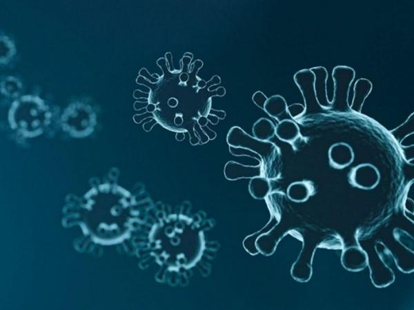 Hər hansı virusa qarşı universal peyvənd üçün zülal tapıldı