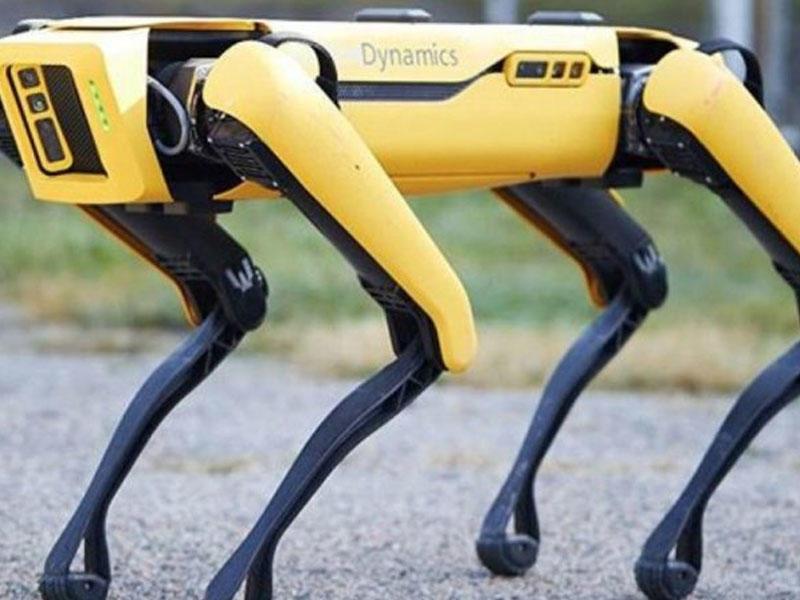 Boston Dynamics-in robot iti neft şirkətində mühafizəçi işləyəcək