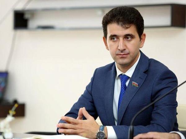 """Münhen debatı Ermənistanın acizliyinin nümayişi oldu"""