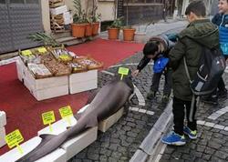 Turkiyədə balıqçının toruna 150 kiloqramlıq balıq düşüb