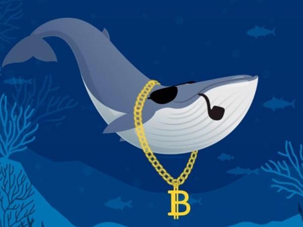 """""""Top 10"""" bitcoin balinalar"""