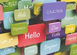 Dünyada ən çox istifadə edilən 100 dil