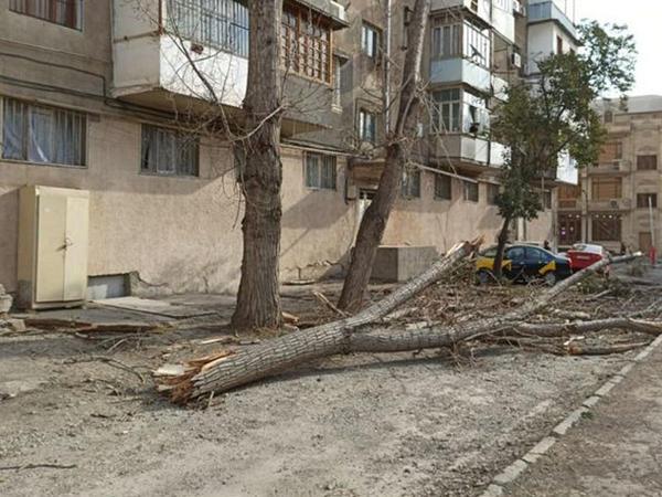 Xaçmazda yaşayış binasının damını külək uçurdu