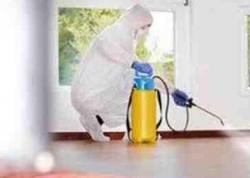 Baş infeksionist: Hazırda məktəb və bağçalarda dezinfeksiya işləri aparılır
