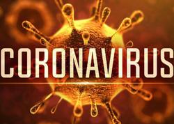 """Koronavirus hansı temperaturda aktivləşdir, hansı temperaturda məhv olur? - <span class=""""color_red"""">Həkimlər müəyyənləşdirdilər </span>"""