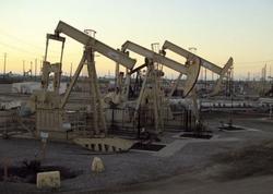 ABŞ-ın gündəlik neft hasilatı 13,1 milyon barrel olub