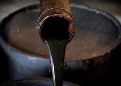 Venesuela neftin barelini beş dollardan satmağa başlayıb