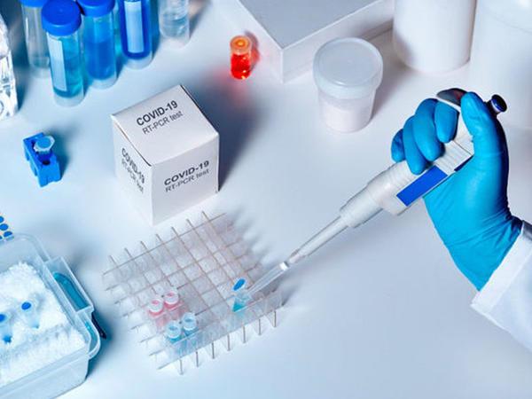 Koronavirusun simptomları və xəstəliyin ağırlığı yoluxan şəxsin immunitet sistemindən asılıdır