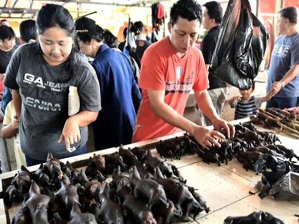 """Çin koronavirusa səbəb olan yarasaları yenidən satışa çıxardı - <span class=""""color_red"""">FOTO</span>"""