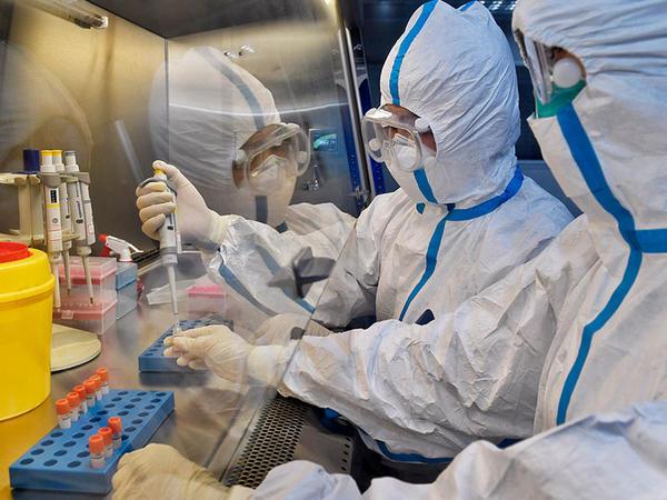 Portuqaliyada daha 754 nəfər koronavirusa yoluxub