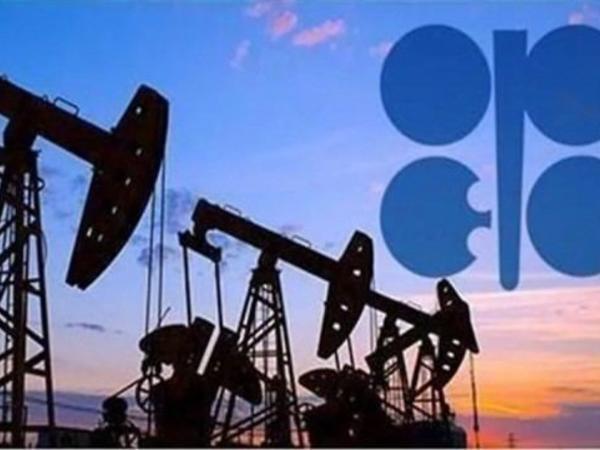 OPEC və qeyri-OPEC ölkələri nazirlərinin görüşü bazar ertəsi keçiriləcək