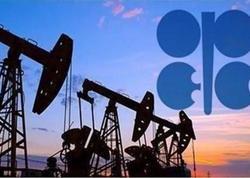 Azərbaycan OPEC və qeyri-OPEC ölkələrinin görüşünə qatılacaq
