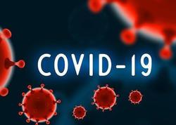 """Gürcüstanda gündəlik koronavirusa yoluxanların sayı <span class=""""color_red"""">1000-ə yaxınlaşır</span>"""