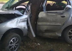 Avtomobili ağaca çırpan sürücü yerindəcə öldü