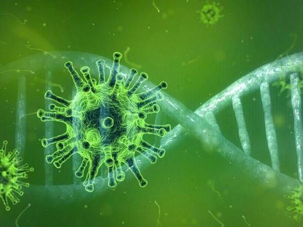 Alimlər koronavirusun genomunu deşifrə etdilər