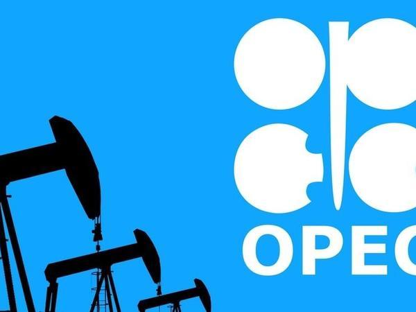 """""""OPEC+"""" ölkələrinin nazirlərinin videokonfransı başlayıb"""