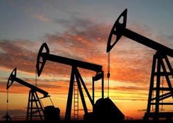 Meksika 19 neft yatağında hasilatı dayandırır