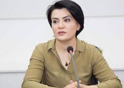 """""""İşğalçı dövlətə qarşı sanksiyalar tətbiq olunmalıdır"""""""