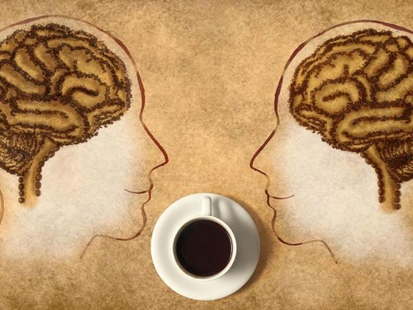 Qəhvə içmək beyin üçün mütləqdir - Neyrobioloqlar