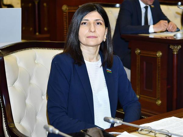 """Deputat Sevil Mikayılova Türkiyənin """"Ekotürk"""" telekanalına müsahibə verib - VİDEO"""
