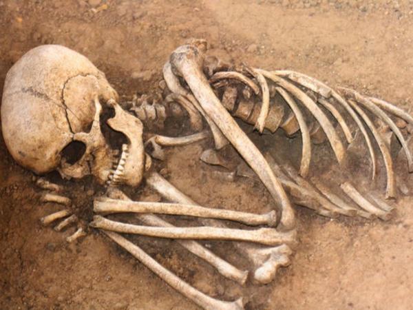 Alimlər ölünün parçalanmasını lentə aldı - 17 ay hərəkət edirmiş