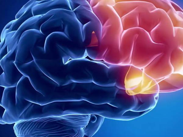 Beyin işini yaxşılaşdırmağın sadə yolu açıqlanıb