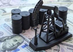Azərbaycan neftinin qiyməti 43 dolları ötüb