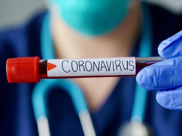 """Koronavirus BU ZAMAN KİMİ qalacaq - <span class=""""color_red"""">Hande Harmancı AÇIQLADI</span>"""