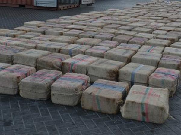 ABŞ-la Meksika sərhəddində 10 tona yaxın narkotik tutulub