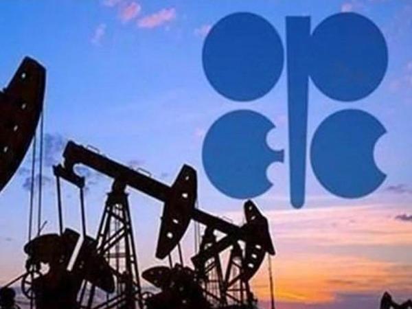 OPEC nazirlərinin hər iki görüşü bir gündə keçiriləcək