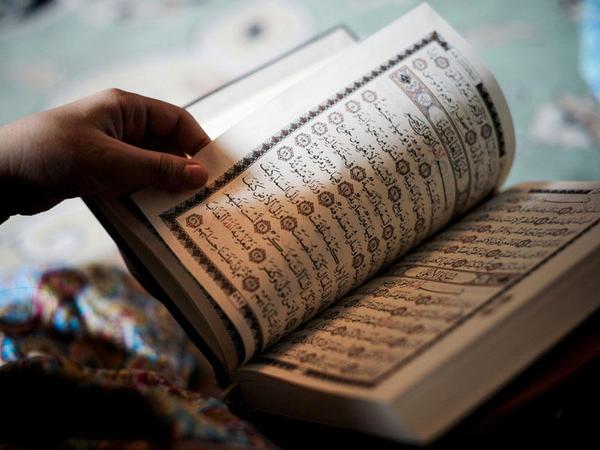 Dəryadan bir damla:Qidanın iki əsas şərti