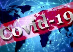 Pekində koronavirusun yayılması nəzarət altına alınıb