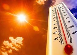 İyul-avqustda temperaturun normadan yüksək olacağı, isti hava dalğalarının tez-tez təkrarlanacağı gözlənilir