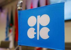 Öhdəliklərini yerinə yetirməyən bütün OPEC + ölkələri kompensasiya cədvəllərini təqdim ediblər