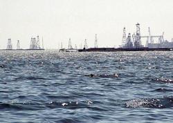 Xəzərdəki göy-yaşıl yosunlar neft platformalarında metalların korroziyasına səbəb olur