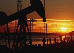 ABŞ-ın kommersiya neft ehtiyatları rekord həddə çatıb